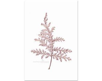 Farmhouse Botanical Print, Fern Leaf Photography, Rustic Country, Brown Wall Art, Vertical Fern Print | 'Silver Leaf - Russet No 3'