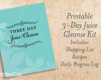 Food blueprint etsy 85x11 printable 3 day diy blueprint juice cleanse kit with shopping list malvernweather Gallery