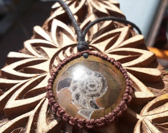 Ancient Ammonite Fossil Macrame Necklace