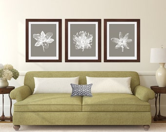 Flower Heads (Series E) Set of 3 Art Prints (Featured in White on Gravel) Botanical Flower Art Print / Poster