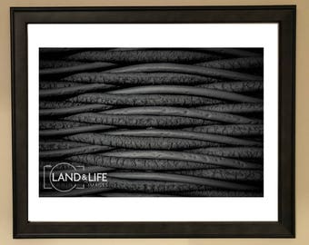Monochrome Abstract Lustre Print Photo