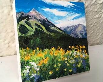 4x4 - Crested Butte in Summer
