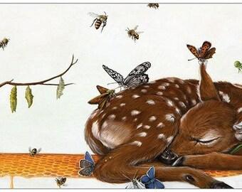 Rite de Passage - Deer postcard