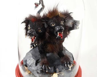 Cerberus The Hell Hound 3 Headed Dog Beast Rogue Taxidermy Figure with Real Fur in Bell Jar Cabinet Curiosity