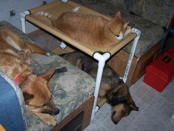 Cat bunk beds window dogs cots cat hammocks cat bed dog for Pet bunk bed gallery