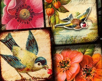 Collage sheet printables -- Flora and Fauna Birds Flowers Roses in 1.5 inch squares Two -- piddix 723
