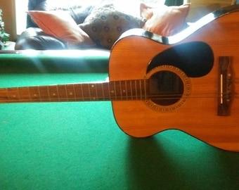 Vintage Horugel Acoustic Guitar