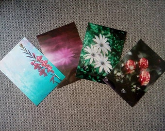 A4 Cornish Floral Photography Wall Art Prints
