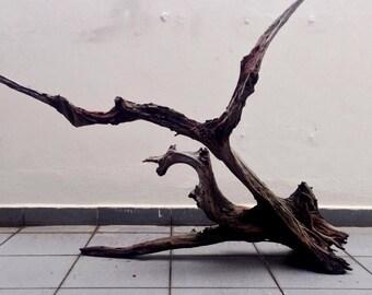 Driftwood  Art  -  Pegasus
