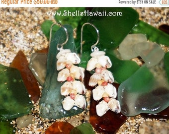Momi & Kahelelani shell earrings from Niihau #233