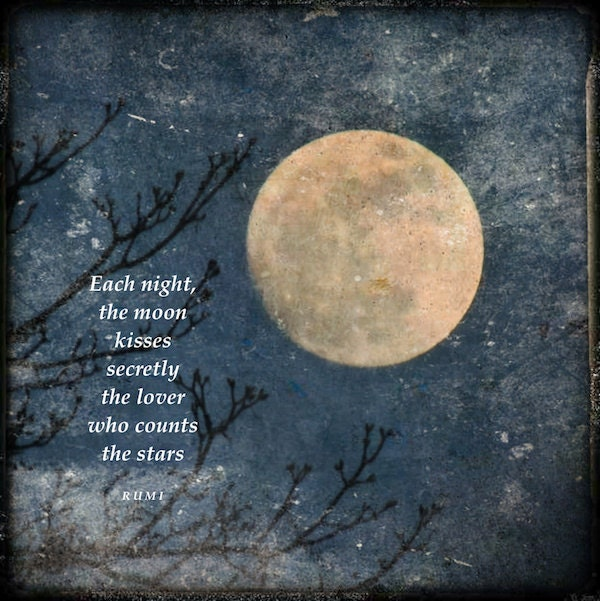 Quotes About Full Moon Captivating Rumi Quote With Full Moon Moon Love Quote Golden Moon Tree
