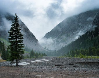 Colorado Nature Photography, Forest Print, Foggy Valley, Epic Landscape Photo, Forest Photography, Scenic Wall Decor, Pine Tree, River