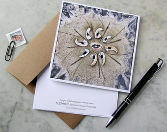 Broken Shells Mandala ~ One 5x5 Square Note Card (with envelope, blank inside, no message)