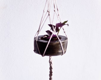 Spider Hanging Pot
