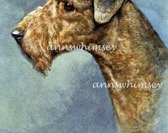 Airdale Terrier Art, Restored Swiss Art,  #299