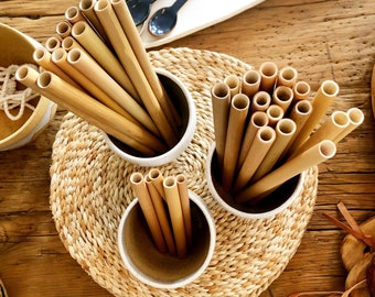 ECO Bamboo Straws (pack of 6)