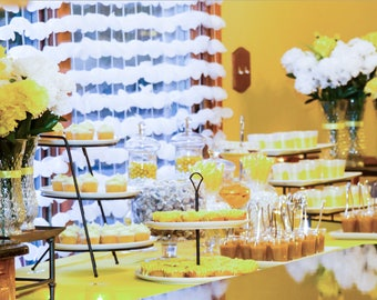 Birthday Party Dessert Table  [Chicagoland Orders Only]