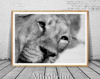 Lion Print, Woodlands Nursery Art, Lion Wall Decor, Black and White Animal Print, Printable Black and White Nursery Decor, Lion Art Poster