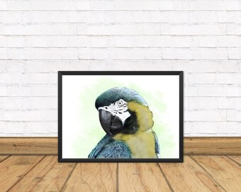 Parrot Print A4 - Parrot Bird - Animal print - Tropical print - gifts - Home decor