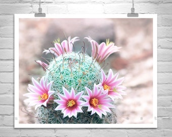 Cactus with Pink Flowers, Wildflower Print, Desert Flower Art, Cactus Photograph, Cactus Flower Art, Pastel Flower Decor, Arizona Gift