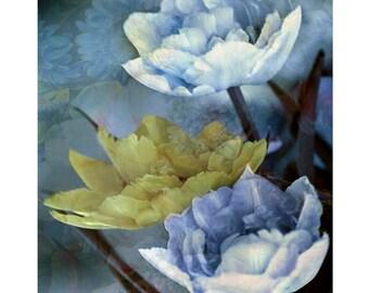 Spring flowers, digital print, fine art print, floral print, modern art, photomontage, home decor, contemporary art, blue yellow, still life