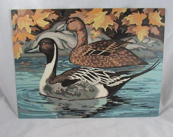 Pintail Ducks Paint By Number Painting Fall Leaves River PBN