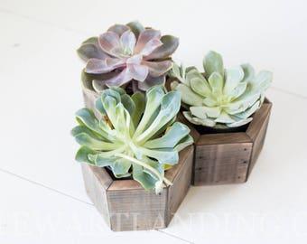 Succulent Planter Box Set of 3 | Geometric Succulent Hexagon Planter | Wood Flower Box | Rustic Wedding Centerpiece | Wedding Table Decor