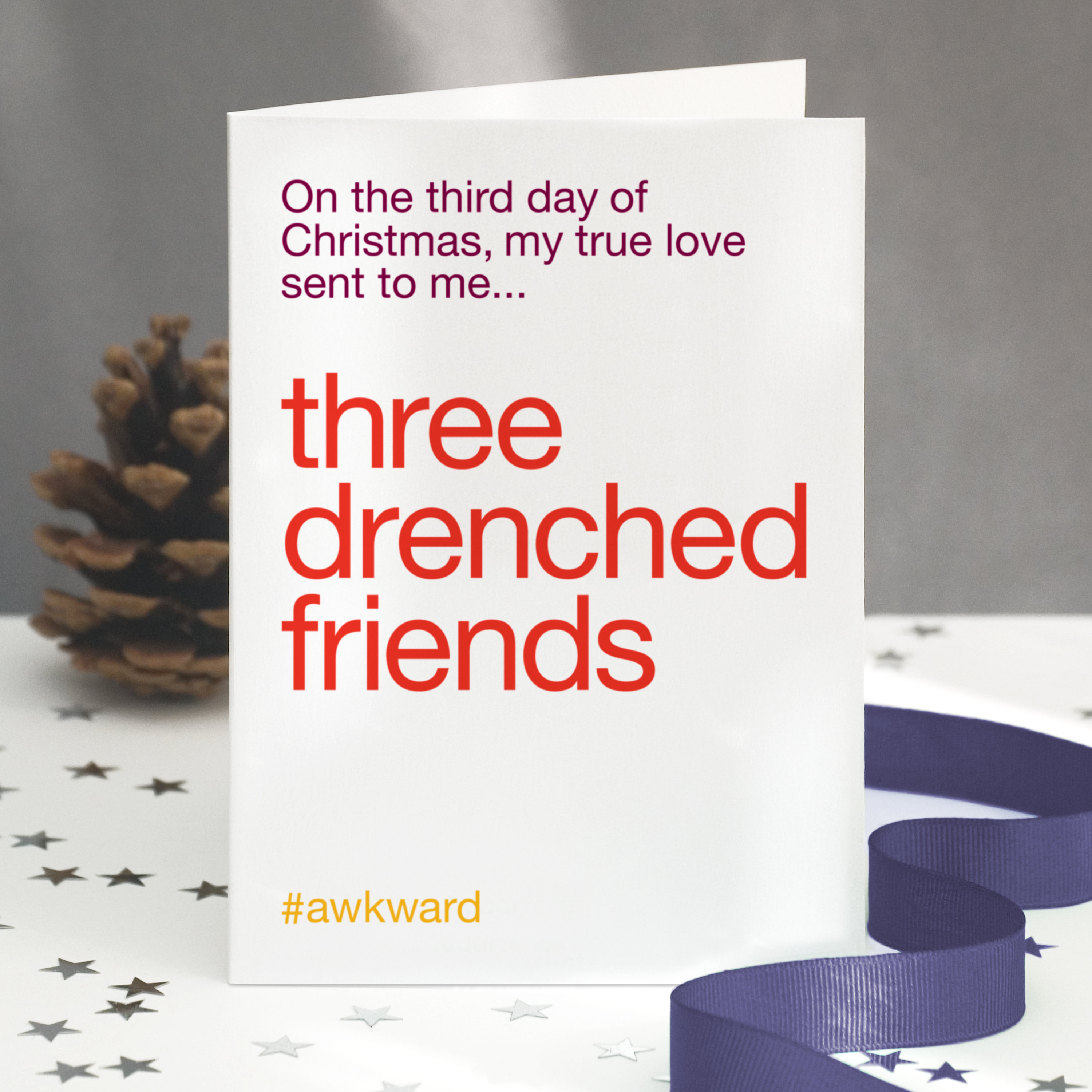Funny Christmas Card For Friends 12 Days Of Christmas