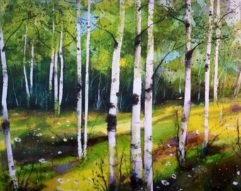Birch Spring Melody Limited Edition Art Print