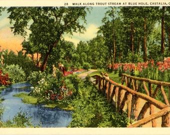 Castalia Ohio Walk Along Trout Stream at Blue Hole Vintage Postcard (unused)