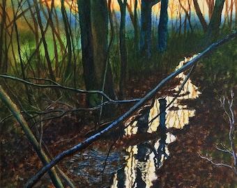 Twilight Creek Original Watercolor Painting by Cathy Hillegas, 11x14 watercolor painting, watercolor creek, tree art, watercolor landscape