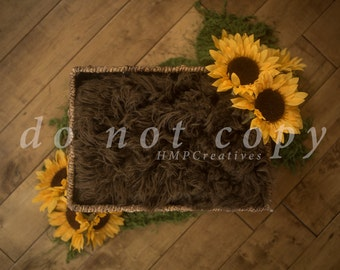Brown Basket with Sunflowers Newborn Digital Backdrop
