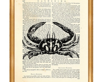 Crab Wall Art, Crab Print, Crab Wall Art, Ocean Life Print, Sea Life Wall Art, Crab Wall Art, Dictionary Art Print, Sea Life Art, Home Print