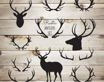 Rustic Clipart Deer Antlers - Woodland Clipart - Reindeer Antlers - Rustic Clipart - Rustic Boho Clipart - Instant Download - JPG PNG EPS Ai
