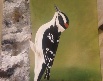 11 x 14 Downy Woodpecker Canvas