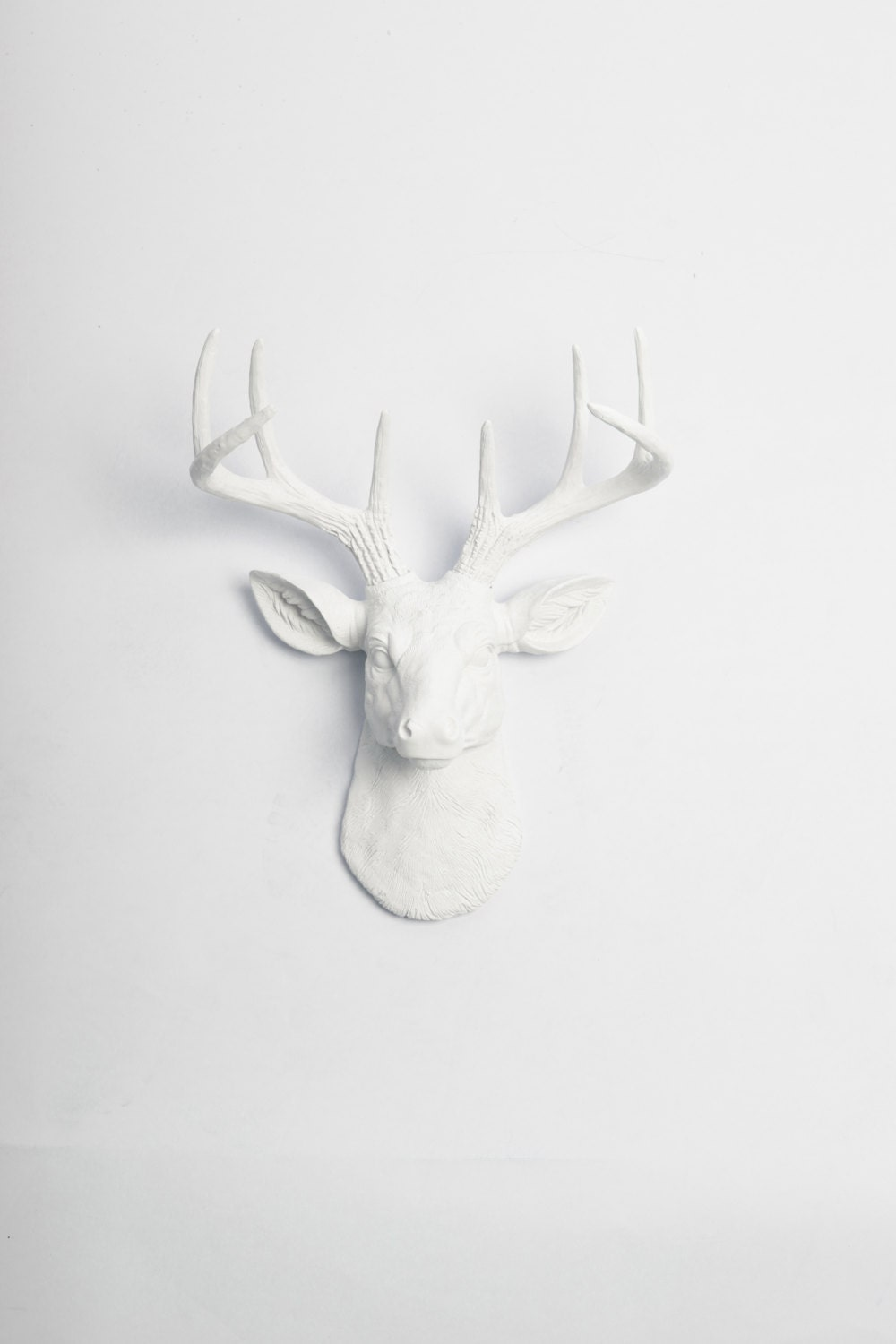 deer rose white a miniature gold wall decor mount stag and head