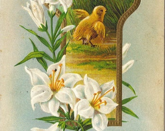 Chick and Lily Flowers In Key Hole Frame Ephemera Easter Greeting Vintage Postcard
