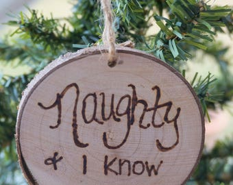 Wooden Ornament, Naughty and I know It, Funny Ornament