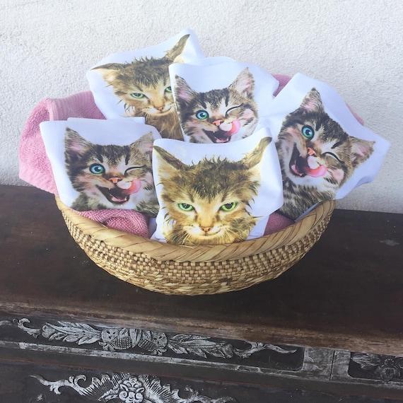 FUORI è in USA mutandine bagnate di Kitty biancheria intima
