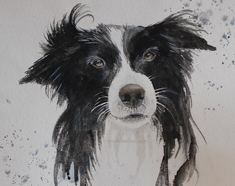Border Collie, PRINT, Watercolour Painting, Home decor, Border Collie Painting, Black and White, Dog lover. FREE Shipping