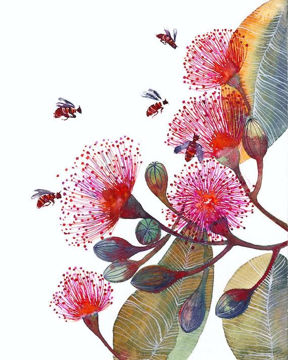 Pink flowering gum flowers and bees popular nature art mightylinksfo