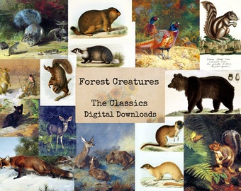 Forest Creatures - Digital Ephemera Classics, Digital Images, Vintage Art, Instant Download, Digital Collage, Art Ephemera
