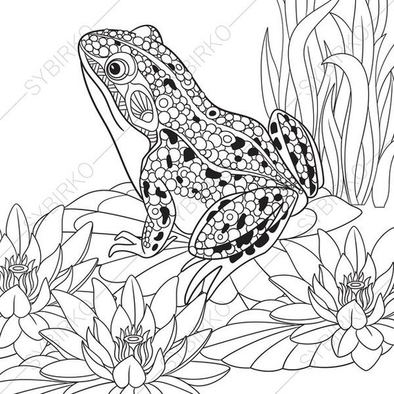 Frog. 2 Coloring Pages. Animal coloring book pages for Adults.