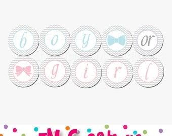 Gender Reveal Party Banner - Boy or Girl Banner - Gender Reveal Party Decorations - Baby Shower Sign - Gray Chevron - Pink Blue and Gray
