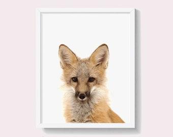 Fox Print, Printable Wall Art, Woodland Animal, Nursery Decor, Digital Download, Forest Animal, Large Poster, Baby Fox print,  #275