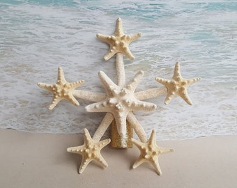 Starfish Tree Topper- Natural, Gold or Silver Glitter - Rustic Coastal Nautical Beach Christmas Ornament Favor Sanddollar
