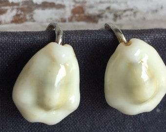 Vintage Cowrie Shell Earrings - Screw Back Clip On
