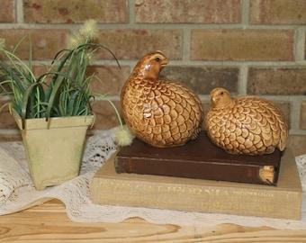 Vintage Ceramic Birds-Mother and Baby Bird-Brown Bird Figurines-Farmhouse Decor-French Country-Photo Prop-Vintage Decor-Ceramic Quails