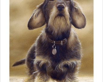 Wire Haired Dachshund Dog Portrait by award winning artist John Silver. Personally signed A4 or A3 size Print. WHD001SP