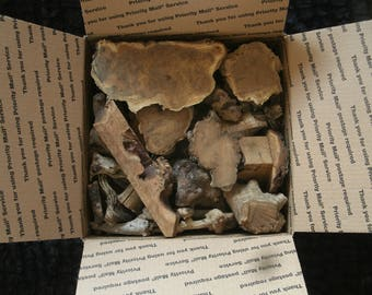 MEDIUM VARIETY PACKS!  Burls & Wood Scraps...Great Father's Day Gift!
